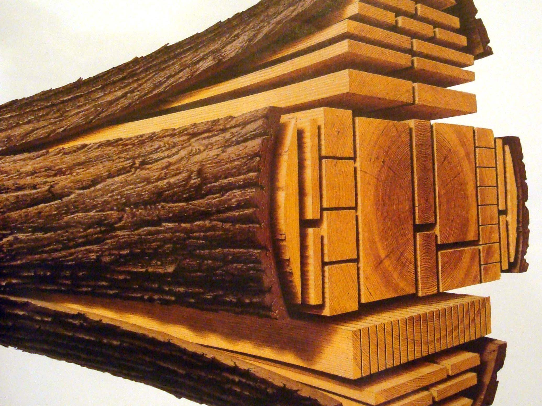 Timber Log Breakdown